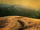 Windy Trail on Hill Photographic Print by Robert Cattan