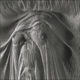 Sheer Waves over Nude Breasts Lámina fotográfica por Monika Brand