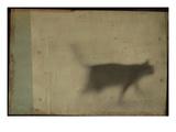Blurred Cat Walking Photographic Print by Mia Friedrich