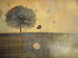 Balloons Tied to Tree Photographic Print by Mia Friedrich