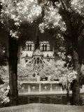 Notre Dame, Paris, France Photographic Print by Jon Arnold