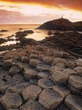 Giants Causeway, Northern Ireland Valokuvavedos tekijänä Doug Pearson