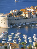 Dubrovnik, Croatia Photographic Print by Peter Adams