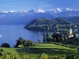 Spiez, Lake Thun, Berner Oberland, Switzerland Fotografie-Druck von Peter Adams