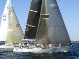 West Florida Ocean Racing Circuit, Pensacola Yacht Club, Pensacola, Florida Fotografie-Druck von Franklin Viola