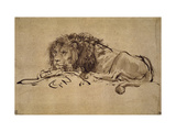 Lion Resting, Turned to the Left Giclee Print by  Rembrandt van Rijn