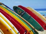 Surfboards For Rent, Waikiki Beach, Oahu, Hawaii Fotografie-Druck von Franklin Viola