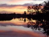 Bayou Sunset, Ocean Springs, Mississippi Fotografie-Druck von Franklin Viola