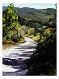 Country Road in Tuscany Giclée-Druck von Helen J. Vaughn