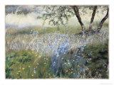 Field with Blue Flowers Giclée-Druck von Helen J. Vaughn