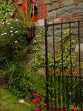 Ireland, Kinsale, County Cork Stampa fotografica di Keith Levit