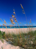 Grace Bay Beach, Turks & Caicos Islands Bedruckte aufgespannte Leinwand von Timothy O'Keefe