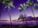 Sunset, Poipu Beach, Kauai, HI Photographic Print by Elfi Kluck