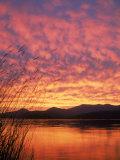Sandpoint, Id, Sunset on Lake Premium fototryk af Mark Gibson