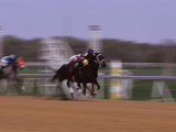 Jockey on Horse in Race Photographic Print by Peggy Koyle