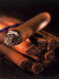 Lit Cigar on Top of Bundle of Cigars Fotografisk trykk av Ellen Kamp