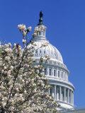Capitol Building, Washington, DC Fotografisk tryk af Mark Gibson