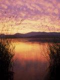 Sandpoint, Id, Sunset on Lake Pond Oreille Fotografisk tryk af Mark Gibson