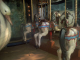 Old Carousel Horses and Duck, Paris, France Photographic Print by Tamarra Richards