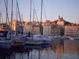 Sailboats in Port by Buildings, Marseille, France Photographic Print by Tamarra Richards