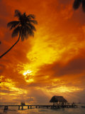 Sunset at Pigeon Point, Tobago, Caribbean Fotografisk tryk af Terry Why