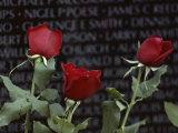 Roses Glow against the Black Granite of the Vietnam Veterans Memorial Photographic Print by Karen Kasmauski