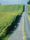 Une coureuse le long d'un champ de maïs Reproduction photographique par Skip Brown