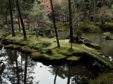 Japanese Garden at Saihoji Temple Photographic Print by Sam Abell