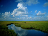 Marsh Canal in Oyster Bayou Reproduction photographique par James P. Blair