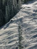 Skier on the Powder Slopes of Aspen Reproduction photographique par Dick Durrance