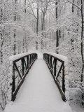 A View of a Snow-Covered Bridge in the Woods Fotografie-Druck von Richard Nowitz