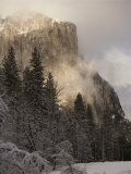 Scenic of Mountain and Fir Trees Photographic Print by Anne Keiser