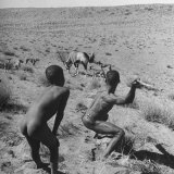 Bushman Throwing His Spear at a Winded Gemsbok Reproduction photographique par Nat Farbman
