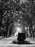 Cours Mirabeau, One of the Main Avenues in Aix En Provence Fotoprint van Gjon Mili