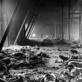 Corpses Litter Gardelegen Warehouse After SS Guards Burn Prisoners to Keep Them Out of Allied Hands Fotografie-Druck von William Vandivert