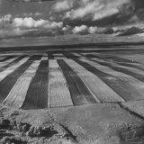 Aerial View of Farmland Reproduction photographique par Stan Wayman
