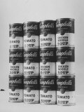 Campbell's Soup Cans Being Used as Example of Pop Culture
