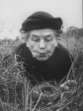 Mrs. Margaret Morse Nice Lying Flat in Grass to Study Nest of Baby Field Sparrows Fotografisk tryk af Al Fenn