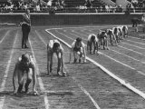 Penn Relay Races, College Students Crouched in Starting Position Photographic Print by George Silk