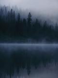 Scenic View Near Mount Shasta Fotografisk trykk av Michael Nichols