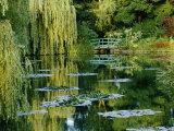 Luz y sombra sutiles revelan los jardines que el pintor impresionista Claude Monet diseñó en Giverny Lámina fotográfica por Grehan, Farrell