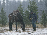 Snow Falls on an Outfitter Grazing His Tacked Horse Reproduction photographique par Annie Griffiths Belt