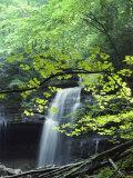 A Cascade Falls from a Rock Formation Impressão fotográfica por Bill Curtsinger