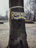 A Symbolic Yellow Ribbon and a Sign Saying Remember on a Tree Photographic Print by Stephen St. John