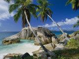A Beach and Palm Trees on La Digue Island Impressão fotográfica por Bill Curtsinger