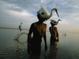 Mohanis Fishermen Catch Herons in the Indus River Photographic Print by Randy Olson