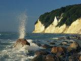 White Chalk Cliffs of the Island of Rugen at Jasmund National Park Fotografisk trykk av Norbert Rosing