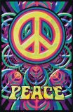 Paz Pôsteres