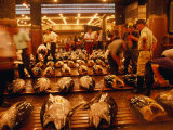 Rows of Giant Tuna for Sale at Tsukiji Central Fish Market, Tokyo, Japan Fotografie-Druck von Oliver Strewe