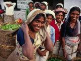 Tea Pickers Outside Factory, Uva, Sri Lanka Lámina fotográfica por Dallas Stribley